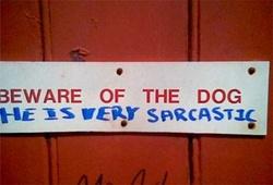 Dogsignsarcasm