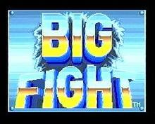 Bigfight